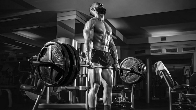 Fitness facts: Training Volume No.1 7